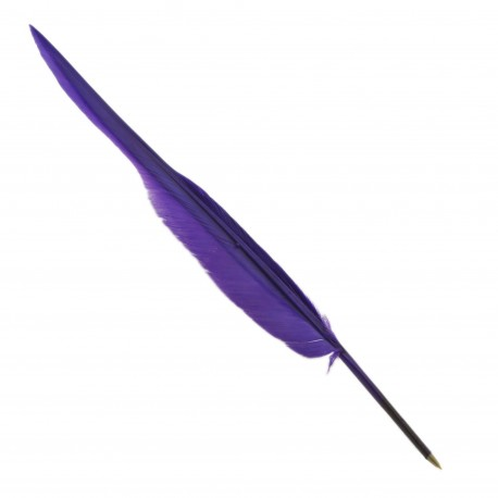 Plume stylo